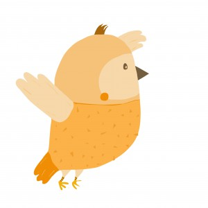 ocell5